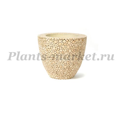 Кашпо Plants first choice Natural trendy wood round